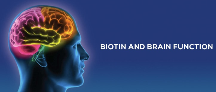 advantage of taking biotin supplements